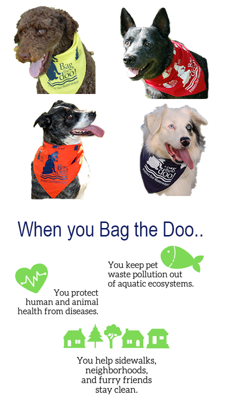 Image shows dogs in bandanas and positive impacts of picking up after your pet.