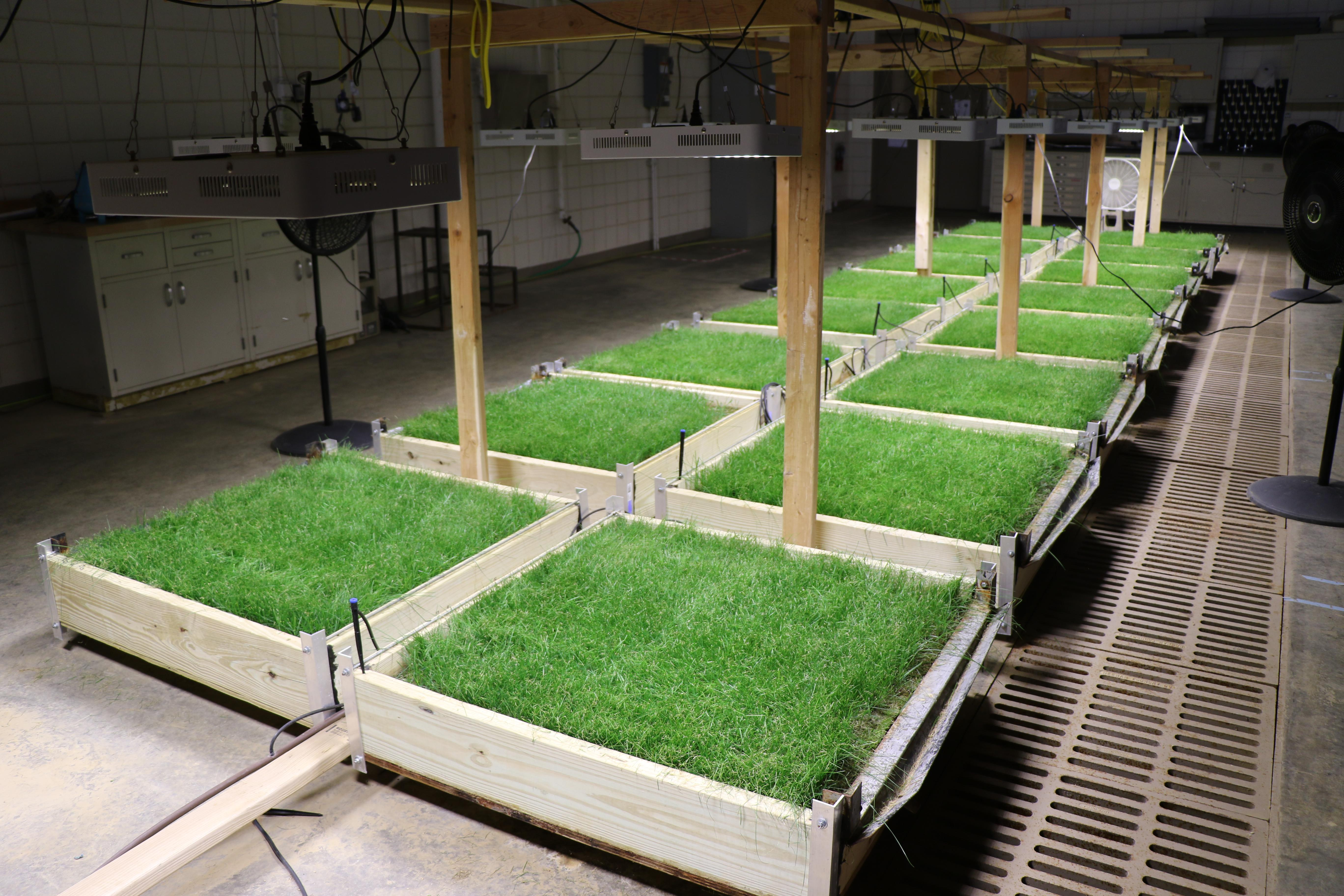 Image shows grass plots used in runoff experiments