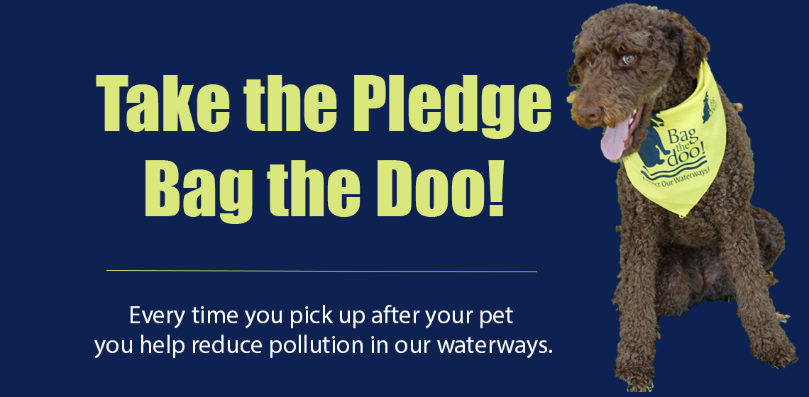 Image of dog and text encouraging owners to Bag the Doo